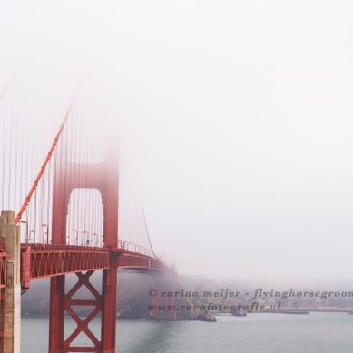 carina meijer - golden gate bridge