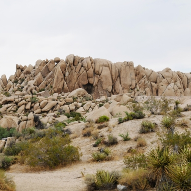 jumbo rocks joshua tree national park