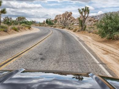 driving mustang true joshua tree national park