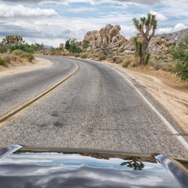 driving mustang true joshua tree national park